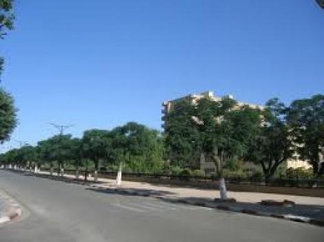 Avenue de la Macta