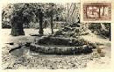 Jardin public de SBA (avant) 10