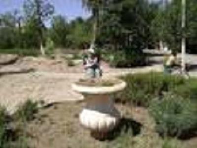 Jardin public de SBA (avant) 9