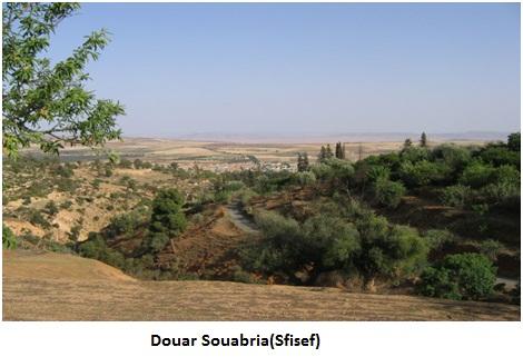 Douar Souabria (Sfisef)