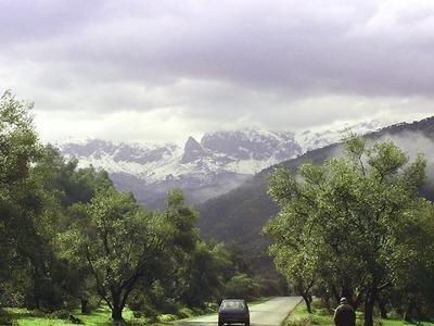 Paysage d'Algérie