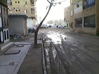 cité des  269 logements 1