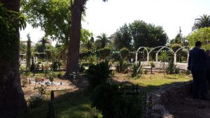 jardin_public6